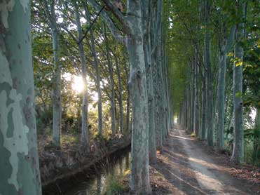Canal d'Urgell between the drylands and Lleida