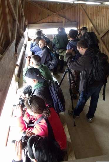 Agents forestals dins del hide a la reserva Remolar-Filipines