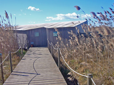 Hide for birding in the Llobregat Delta near Barcelona