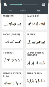 Collins Bird Guide App bird families