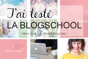 J'ai testé la Blogschool, des vidéos plein d'astuces pour les blogueuses