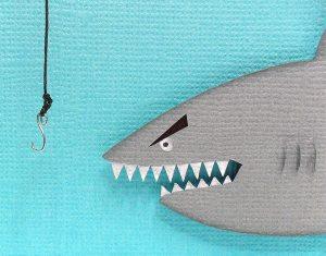 shark fishing card 5