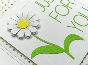 daisy frame tag 2
