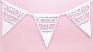 birthday girl pennants