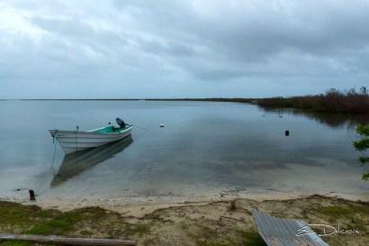 Survey boat (Photo by Eric Delcroix)
