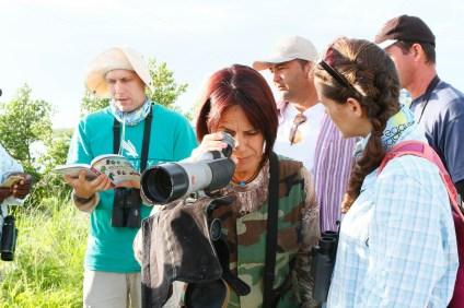 Identifying shorebirds at Tuna de Zazas (photo by Ernesto Reyes)
