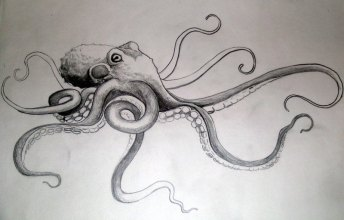 tako_octopus_by_dvampyrelestat