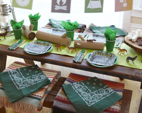 Camping Birthday Party Ideas set