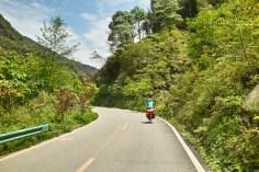 Kiwis, Papayas, Bananen und Mangos am Wegesrand
