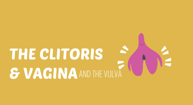 BISH CLITORIS AND VAGINA header