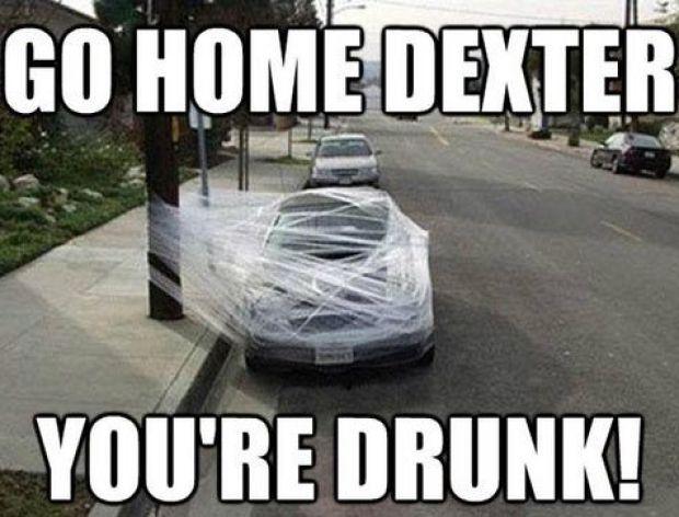 Go home dexter