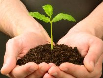 Work Towards Creating a Sustainable Company With These Three Tips