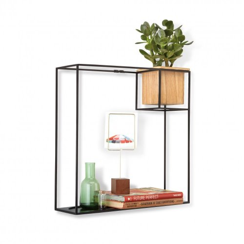 Medium Of Large Display Shelf