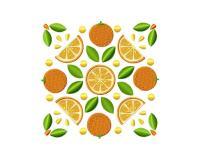 Orange Square 5_5 inch