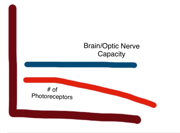 A second hand-drawn graph representing my personal case. The same horizontal line is there representing the brain/optic nerve capacity, but this time the line representing the number of photoreceptors I have starts below the line on the left and slopes gradually downward toward the bottom right.