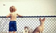 Zwierzak w domu – o wspierającym wpływie zwierząt na rozwój dzieci.