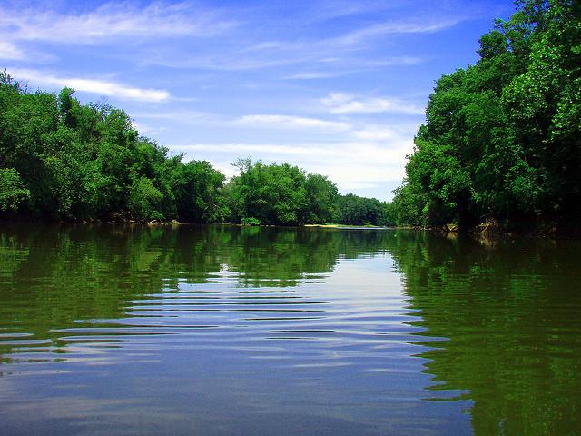 pêche de la carpe en rivière pour les débutants