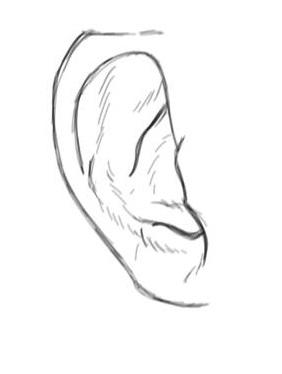 apprendre à dessiner une oreille