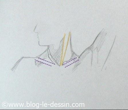 dessiner cou epaules tete tournee surbrillance
