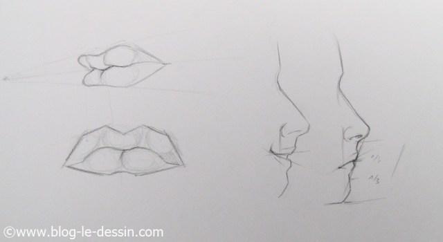 Vous pouvez diviser le visage en plusieurs parties pour trouver lemplacement de la bouche et la dessiner plus facilement