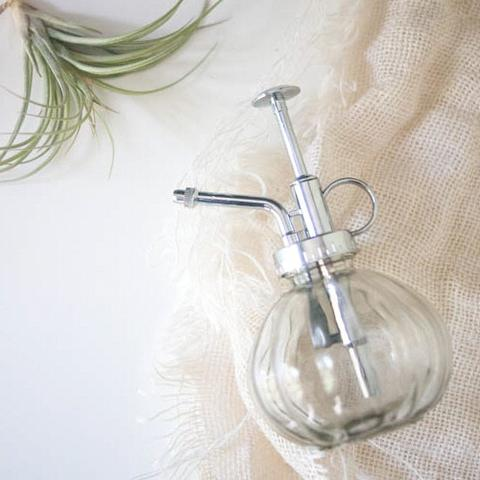 Glass Plant Mister for Air Plants & Succulents   Gather Goods Co