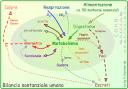 Metabolismo umano [Wikipedia]