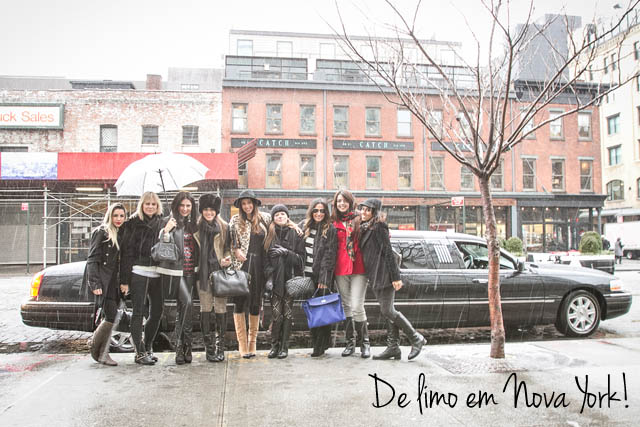 blog-da-alice-ferraz-savoya-limousine-ny