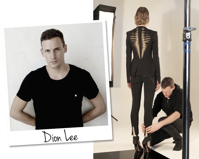 blog-da-alice-ferraz-dion-lee (1)