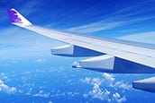 Plane wing sm