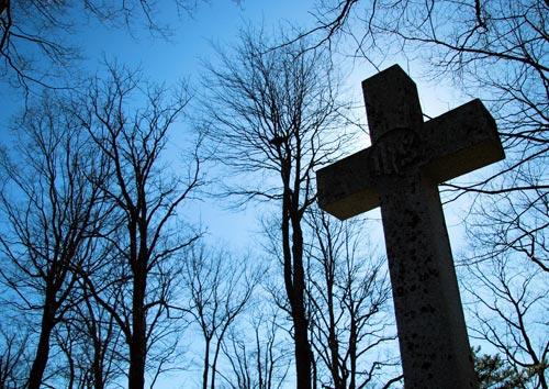 cross-trees