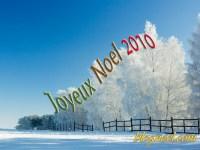 joyeux-noel-2010-arbre-givr
