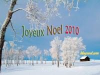 joyeux-noel-givre-arbre