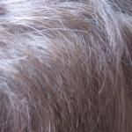 Idade do cabelo, como evitar os sinais