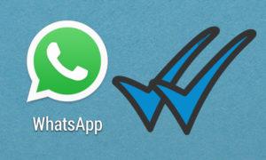 whatsapp-blue-tick-doble