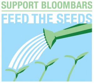 Support-and-donate-to-bloombars