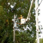BPL : Verizon Responds To NCL Inquires Regarding Installation
