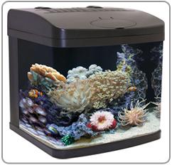 you are here home aquarium supplies aquariums aquapod aquarium