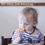 Lunchbox Ideas for Baby Led Weaning #3