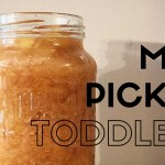Dealing with a Picky Toddler