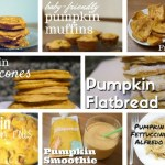 A Roundup of My Baby-Friendly Pumpkin Recipes