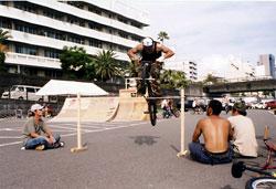2004higuti