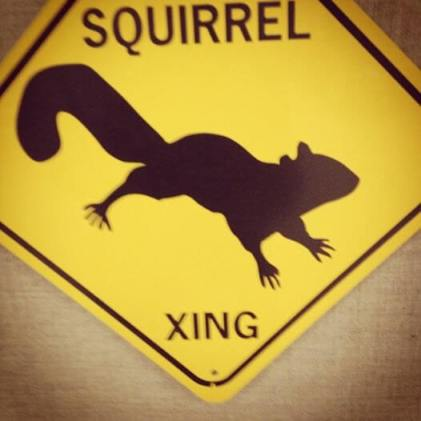 Bob the Squirrel road crossing sign