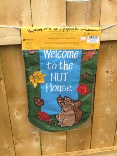 squirrel banner