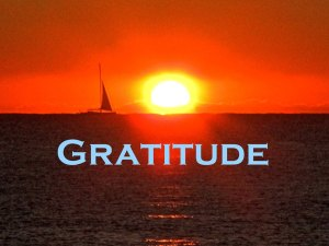Gratitude - Wishing All a Happy Thanksgiving Holiday - Photo Courtesy Rick Alovis