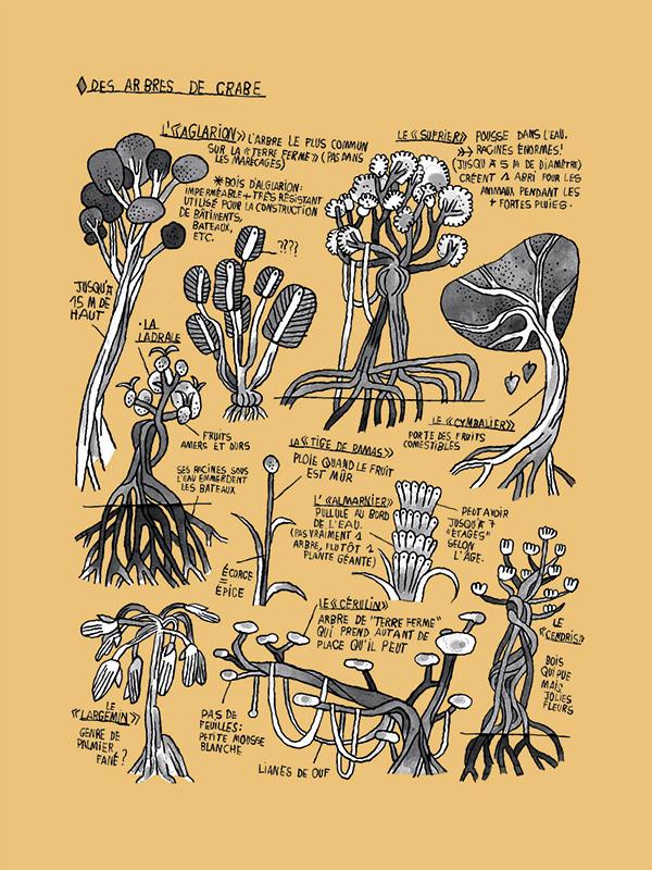 voyage-republique-du-crabe-image2