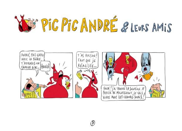 PICPICANDREplanche2