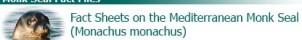 Fact Sheet Logo for Monk Seal