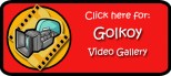 VideoGallery- Golkoy logo copy