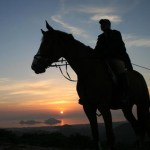 Horse silouette against Turgutreis sunset Turkey