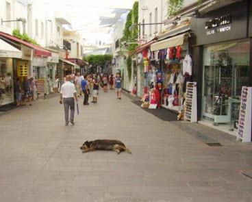 Shopping in Bodrum Turkey